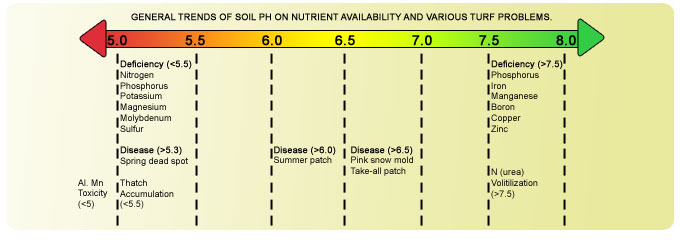 Grass Roots Lawn » Soil pH and its Effect on Nutrient